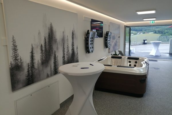 Whirlpool Villeroy und Boch Showroom Innermanzing